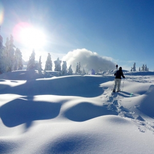 Snowshoeing with a guide