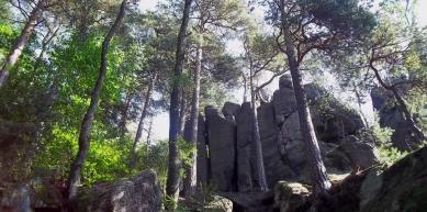 A picture from Zamek Szczytna i wielkie skały. by Mariusz Pietrzak