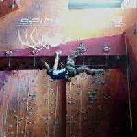 Spider Club by Gergo Belinszky