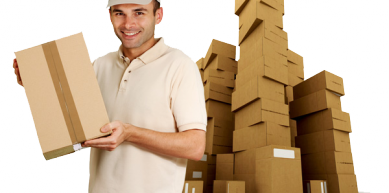 A picture from Berdorf by Srikrishna Packers Movers