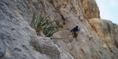 A picture from El Chorro by Tobias Rice