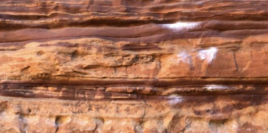 A picture from Kalbarri by Caro Barcena