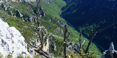 A picture from Gorges du Verdon by Zabya Isa